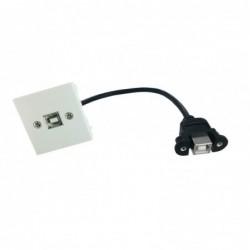 Plastron 45x45 USB B F/F - 0,20m